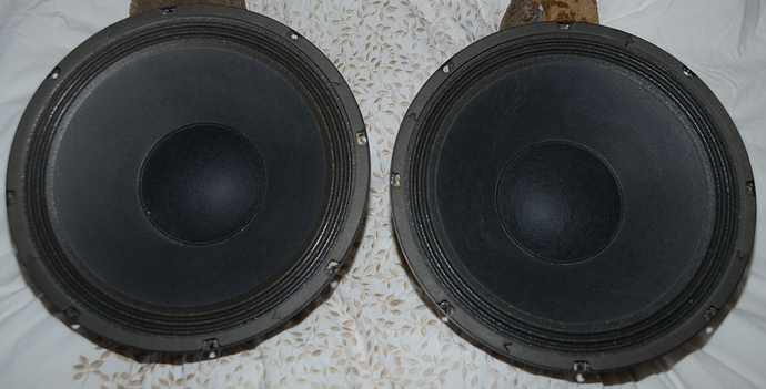 Robert Bastanis open baffle drive units - Classifieds